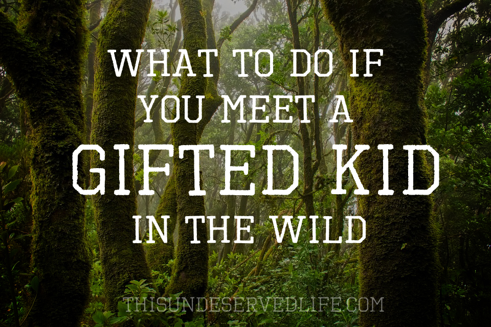What to Do If You Meet a Gifted Kid in the Wild